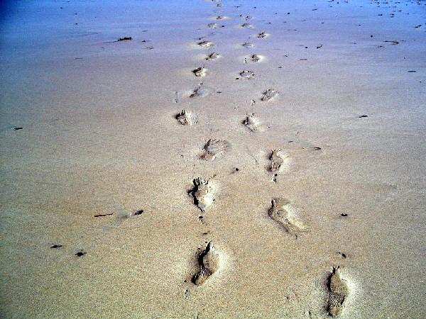 huellas-playa